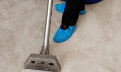 Carpet Cleaning Whetstone