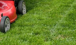 Lawn Mowing Whetstone