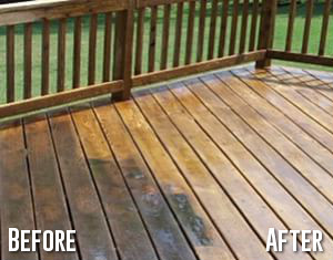 Before and After Patio Cleaning