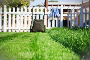 grass-cutting-services-whetstone