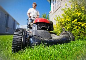 grass-cutting-whetstone