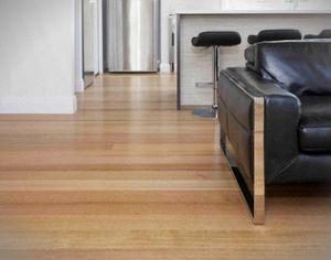 hard-floor-cleaning-polishing-whetstone